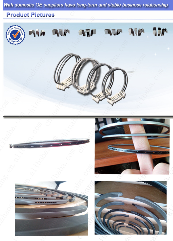 Piston Ring factory/ manufactural/supplier