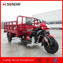 China OEM New Products Chopper Trike/250Cc Trike Chopper/Trike Chopper Three Wheel Motorcycle