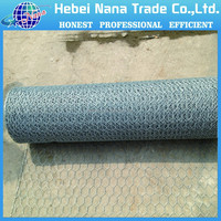 1/4 inch galvanized chicken wire mesh/galvanized hexagonal wire netting