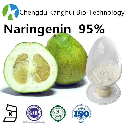 Herbal Food Supplement 95% Naringenin 480-41-1 plant extracts