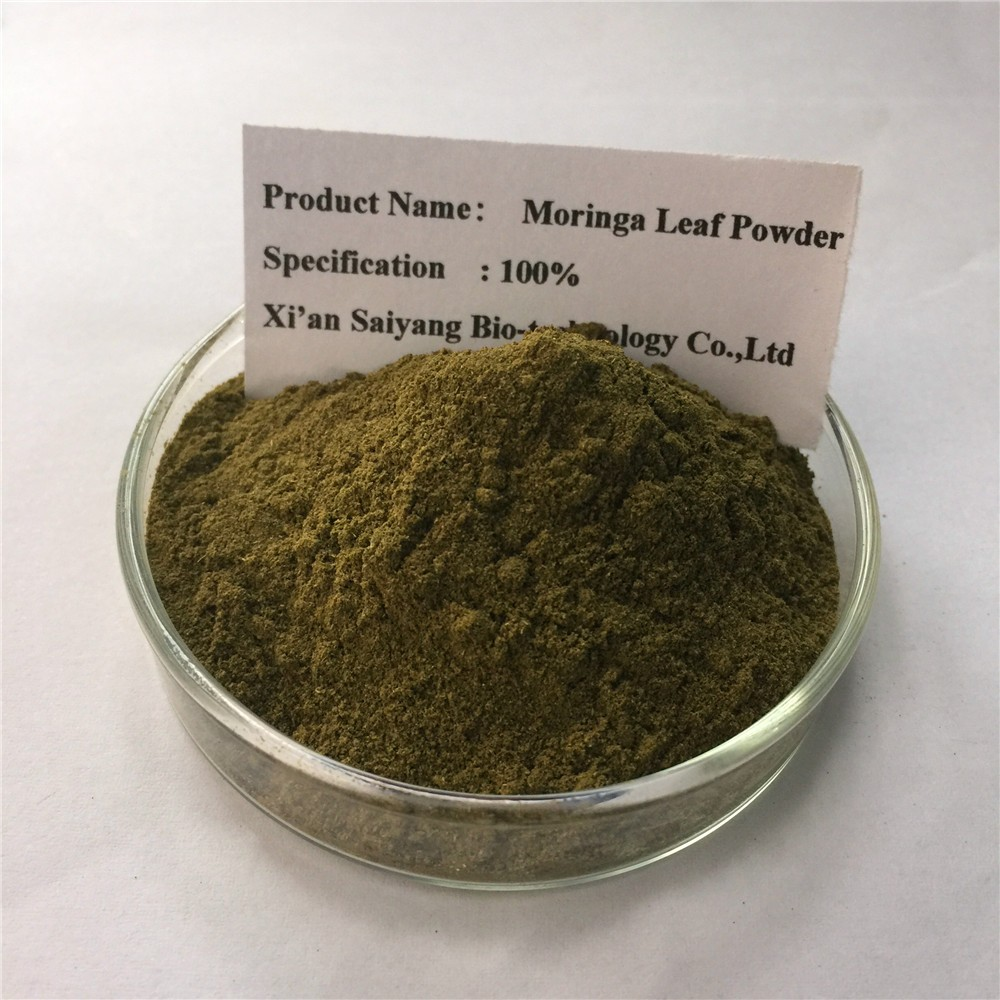 USA moringa leaf powder/moringa leaf powder/moringa leaf powder price