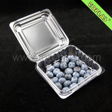 Accept Customized plastic PET clamshell blister packaging