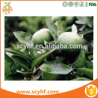 Fruit Extract natural sweetner 98% Neohesperidin Dihydrochalcone (NHDC) powder