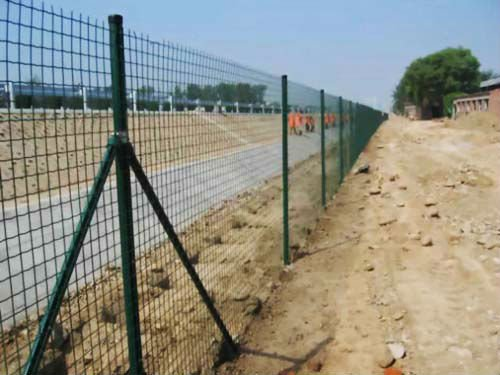 wire mesh fence (professional factory)
