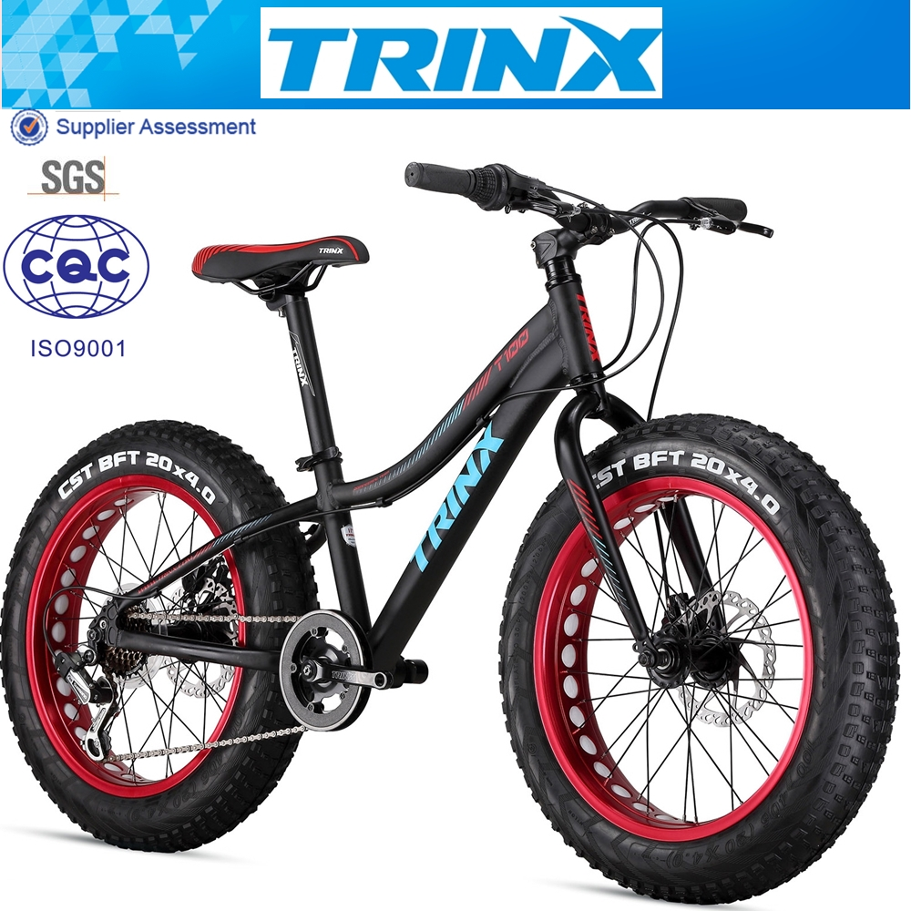 Aluminum Fat Bike for Kids 20 inch Snow Bike wholesale price