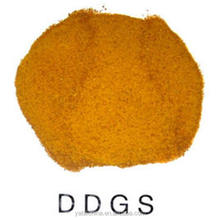 Feed additives Corn DDGS 26%MIN Distillers Dried Grains with Solubles ON HOT SALE