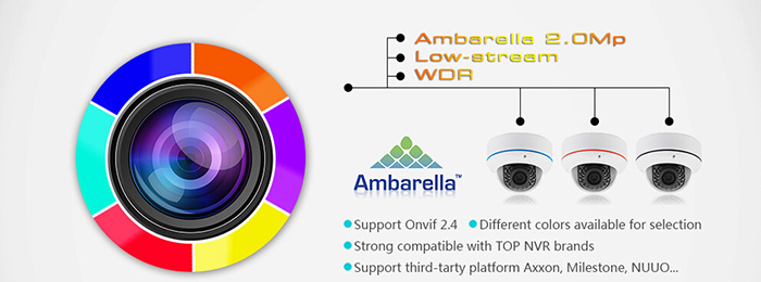 4 in 1 hd camera, AHD TVI CVI CVBS, 1080p cctv camera, android mobile phone app free, buy 20 cameras get 1 free - LIRDLHTC200SL