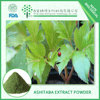 Factory supply in Angelica Keiskei Extract with 10:1 Imperatorin
