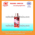 Transparent Red Painting Flower Metal Vacuum Flask with glass refill 2L 113