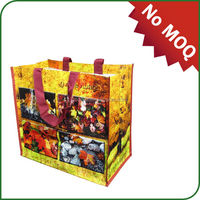 Manufacturers wholesale cheaper price PP shopping bag