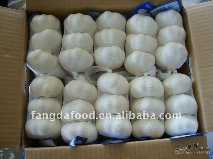 Hot sell! garlic price in China market