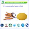 ISO&GMP Factory Supply cordyceps militaris Extract Cordyceps adenosine Powder