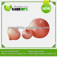 China fresh all kinds of onions supplier(good quality and competitive price)