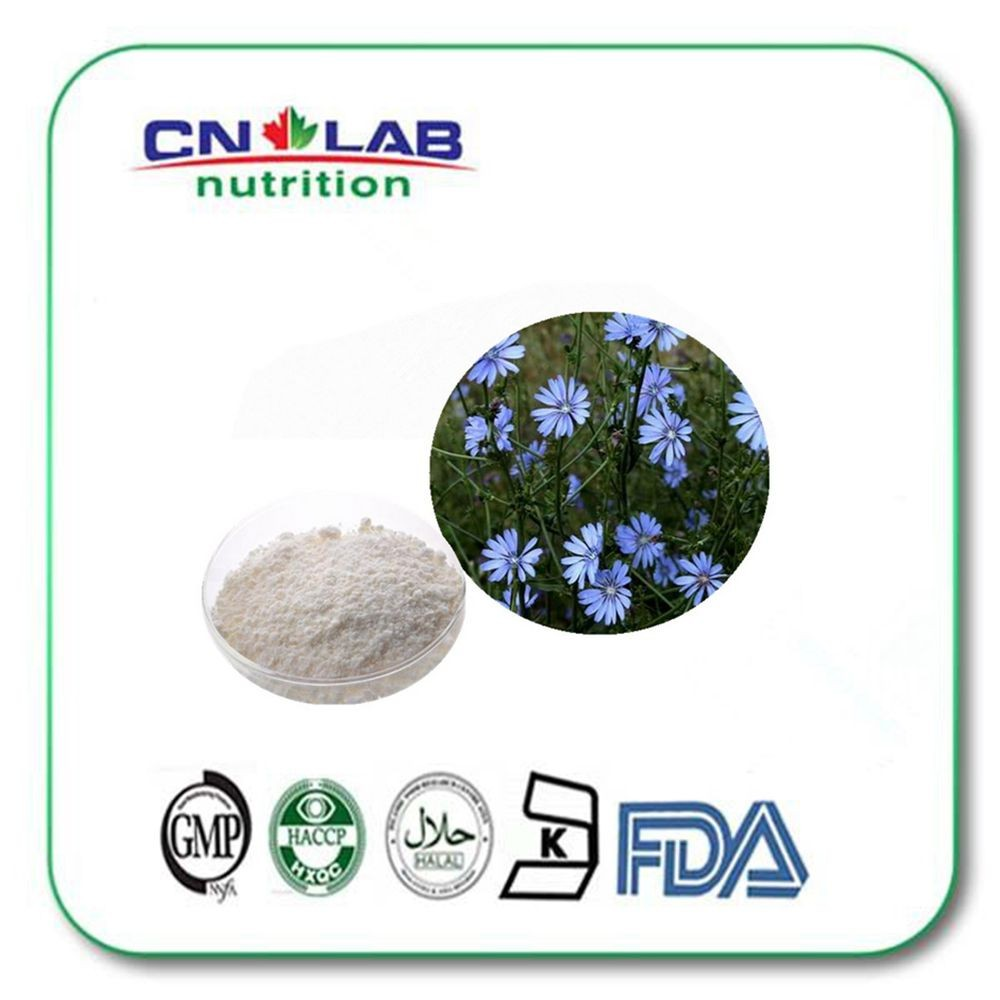 factory supply Natural 90% 95% Inulin Chicory Root Extract Powder Inulin In Bulk