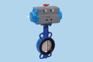 Valbia butterfly valves