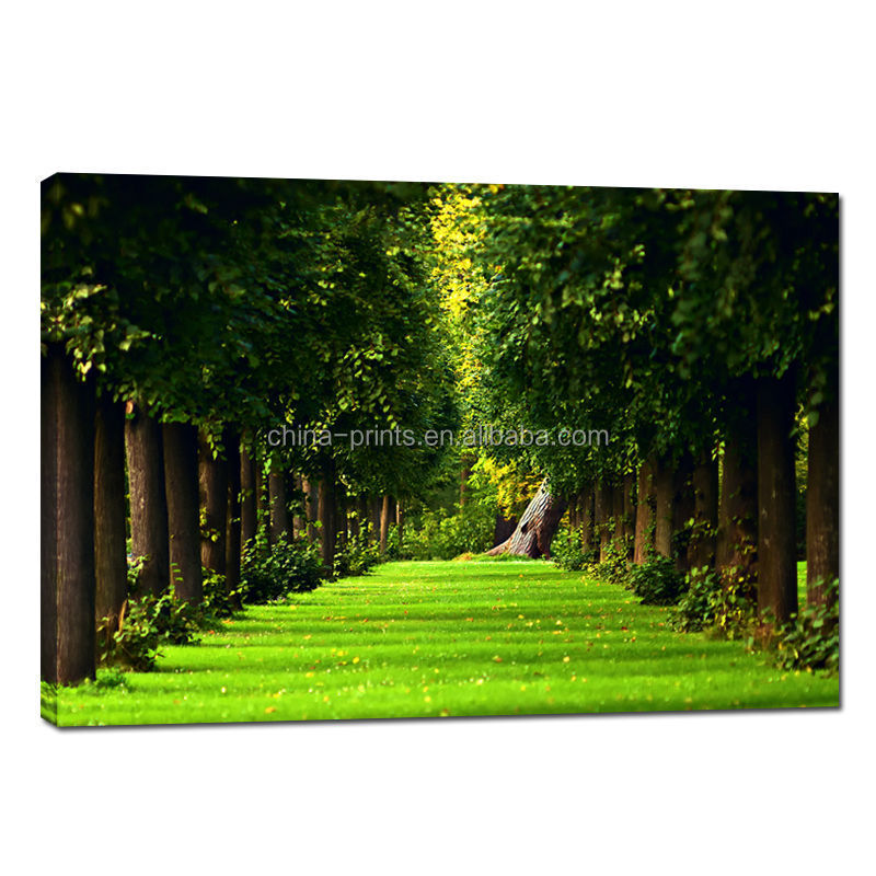 Natural Scenery Wall Picture/Home Decor Wall Hanging/House Decoration Products