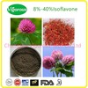 Pure natural Trifolium Pratente Extract Powder/40%Isoflavones with ISO Certificate