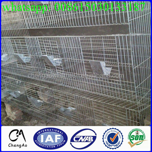 BV ISO approved bunny rabbit hutch/rabbit farming cages/rabbit cages for sale