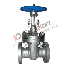 Multifunctional Rising Spindle Gate Valve