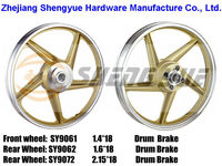 gold paint to paint motorcycle wheels