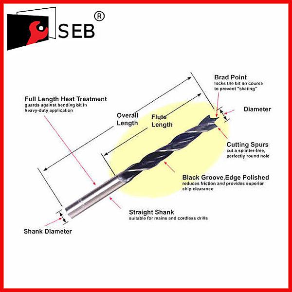SEB-WDB-005.jpg