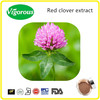Trifolium pratente p.e./20% Isoflavones Red Clover Extract Powder / Red Clover Extract