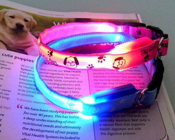Popular discount leopard series led collar