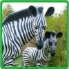 /product-gs/newest-design-wild-animal-theme-park-zebra-statue-60248121787.html