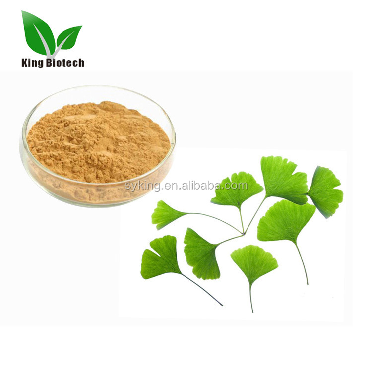 High quality Folium Ginkgo Leaf extract/ Gingko biloba Leaf P.E /Ginkgo Biloba Powder