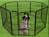 Pet product, metal dog cage,dog carrier,pet carrier