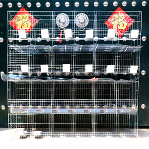 industrial breeding rabbit cage factory 3 or 4 layer/Commercial rabbit cage/galvanized welded mesh cage for rabbit
