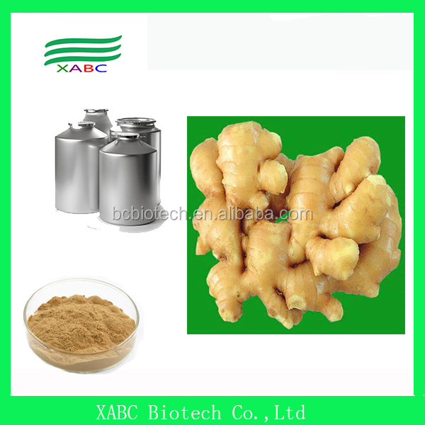 High Quality Natural Organic ginger extract, ginger extract powder, ginger extract powder(water soluble )