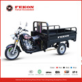 250cc power three wheel motorcycle