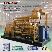 CE approved 10kw to 1MW cogenerator methane gas power generator natural gas generator 1 mw
