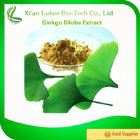 Natural Plant Raw Material Ginkgo Biloba Extract 24% Total Flavones Glycoside