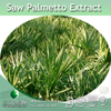 Top Quality Saw Palmetto Fatty acid Extract,45% Fatty acid Saw Palmetto Extract,Fatty acid Powder