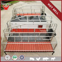 Hot Sale High Quality High Survival Rate pig farm house