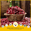 Natural red color chilli pods with stem dry spices and vegetables supplier