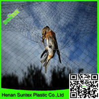 Agricultural netting anti bird net with 2 inch holes/extruded garden anti bird net/fruit cover bird screen mesh