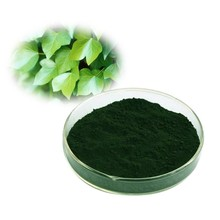 Factory price supply top quality Sodium Copper Chlorophyll