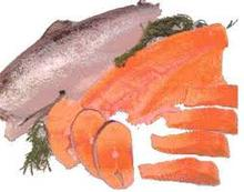 Salmon fish from Norway
