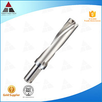 Innovative Processes for Tungsten Carbide Solid End Mills in TIANYI Brand from China