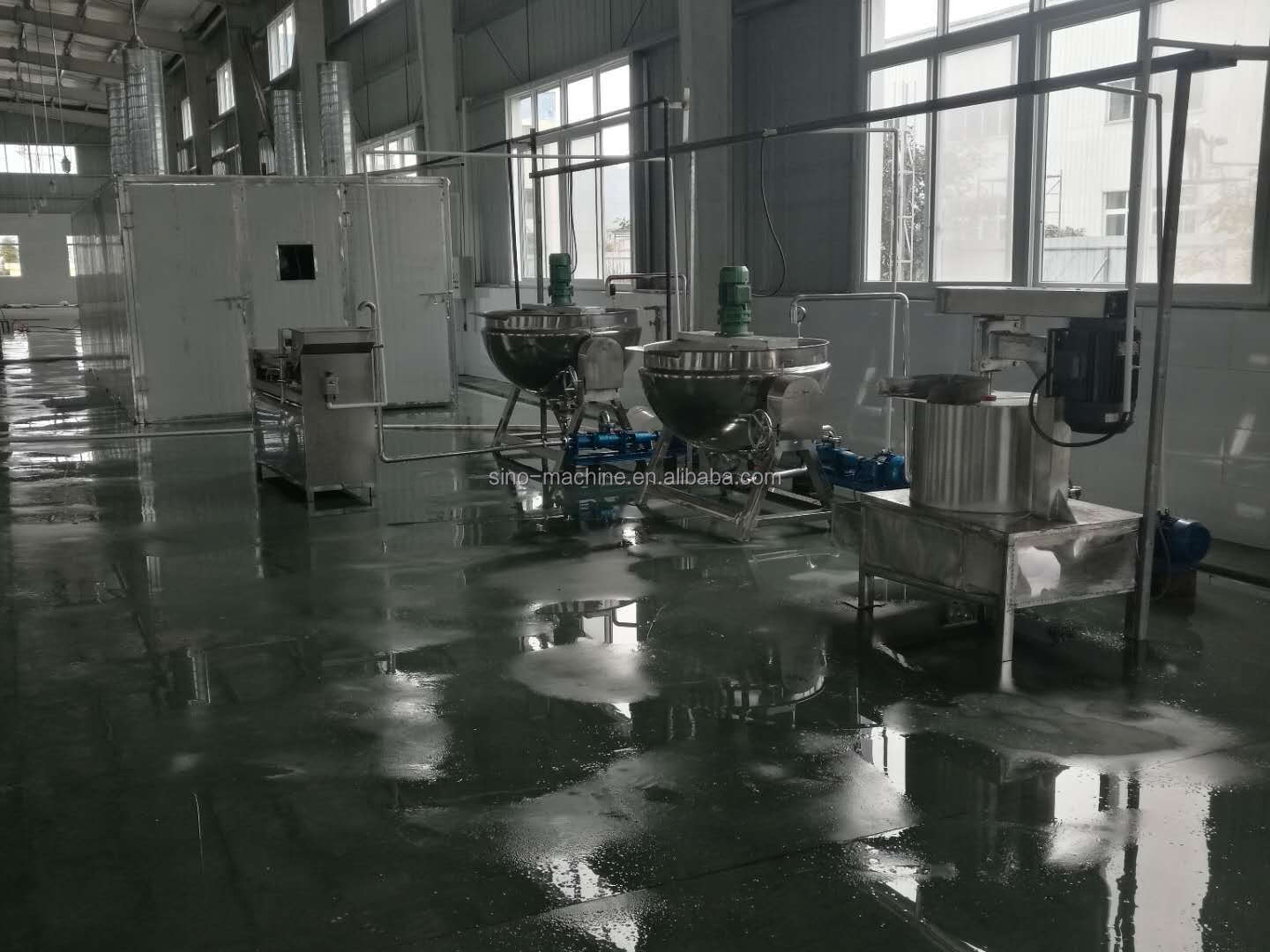 Fruit leather making machine/production line