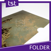 Customized Printing L Folder & Plastic File Folder