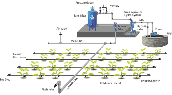 Greenhouse Drip Irrigation System Plant Watering System View Greenhouse Drip Irrigation System