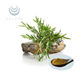 Rosemary Extract Carnosic acid 30% plant extract
