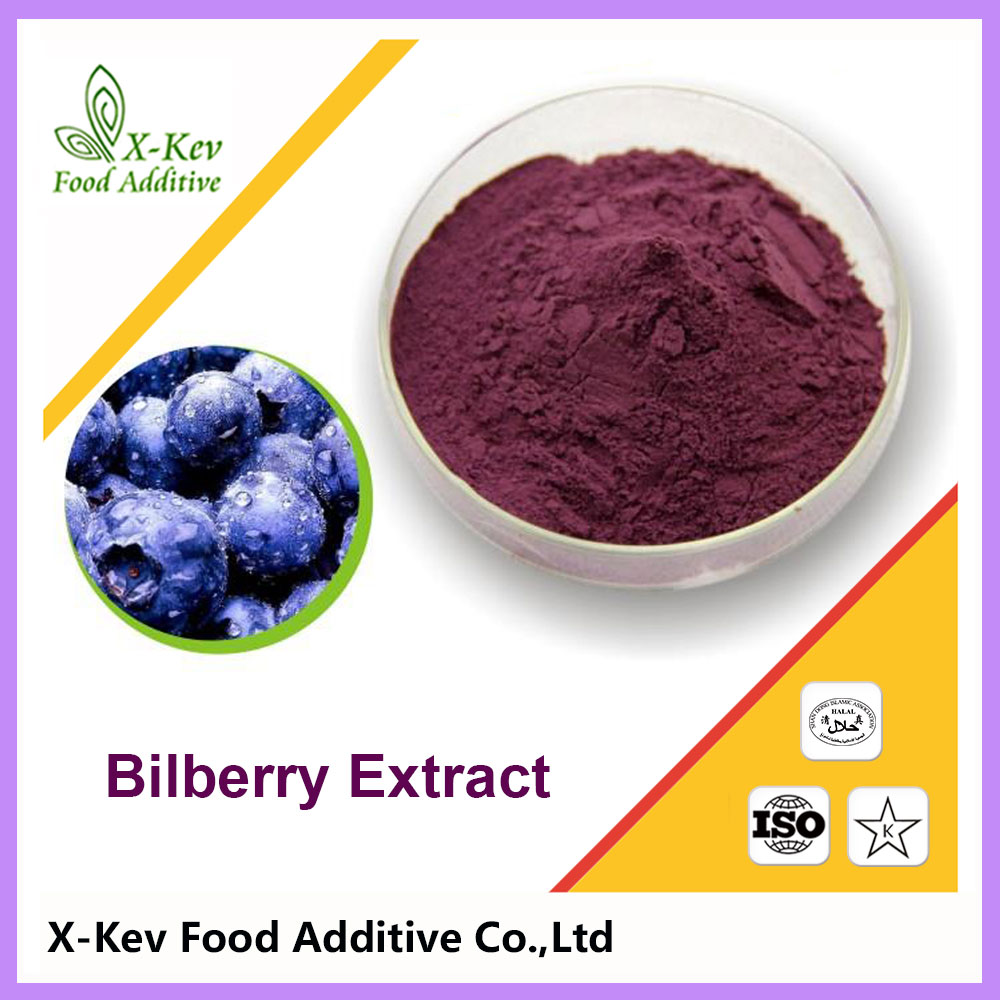 Eye Protection Natural Fresh Bilberry Extract Anthocyanidin 25%