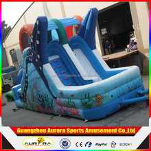 Inflatable Dolphin Water Slide, Inflatable Wet/Dry Slide