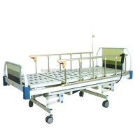 Electric Nursing Bed (model A1-1)