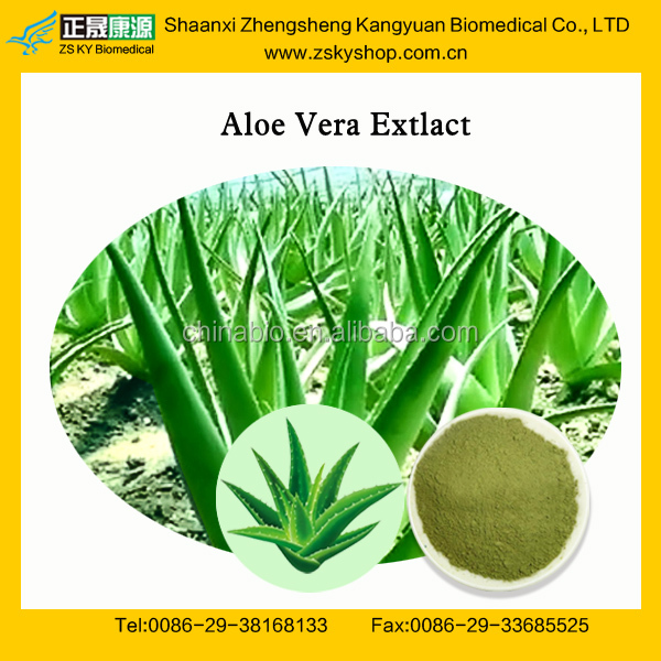 GMP Factory Supply Natural Aloe Vera Herbal Extract